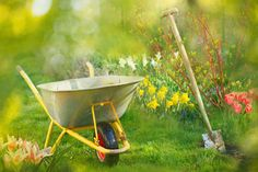 Gartenarbeit im Frühling Wheelbarrow, Garden Tools, Yard Tools, Outdoor Power Equipment
