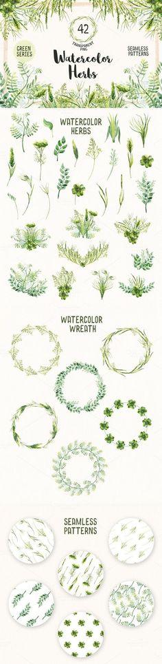 Watercolor Herbs Vol.2