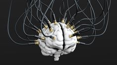 A new DARPA program aims to develop an implantable neural interface able to provide unprecedented signal resolution and data-transfer bandwidth between the human brain and the digital world.