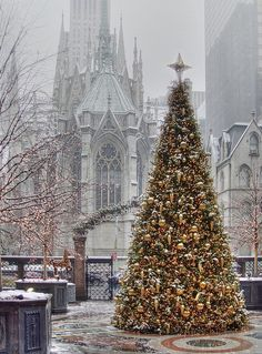 Outdoor Christmas tree in foreground near beautiful church in the fog behind.