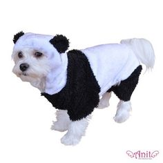 Costumes for Dogs/Puppies - Find latest designer dog clothes for all holiday occasions. Halloween puppy costumes, Christmas puppy costumes, Easter and other. Panda Dog Costume, Panda Costumes, Puppy Costume, Pet Costumes, Halloween Costumes, Funny Halloween, Costume Ideas, Halloween 2013, Pet Vet