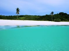 Calaguas Is. Camarines Norte (ride a train to Bicol, nice! Philippines, To Go, Train, Island, Adventure, Beach, Places, Water, Outdoor Decor