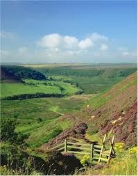 The North York Moors, UK Reminds me of the Thomas Hardy novels Yorkshire England, Yorkshire Dales, North Yorkshire, Republic Of Ireland, The Beautiful Country, English Countryside, Lake District, British Isles, Great Britain
