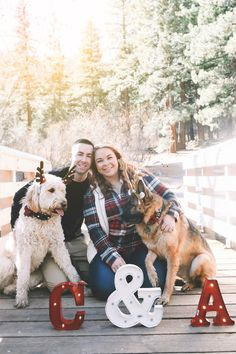 Couple Photoshoot With Dog Christmas Cards Dog Christmas Pictures, Family Christmas Cards, Christmas Dog, Christmas Card Photo Ideas With Dog, Holiday Pics, Christmas Scenes, Xmas Cards, White Christmas, Photos With Dog