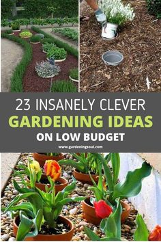 23 Insanely Clever Gardening Ideas on Low Budget Garden Yard Ideas, Lawn And Garden, Garden Planters, Garden Beds, Garden Projects, Balcony Gardening, Patio Ideas, Planting Vegetables, Growing Vegetables