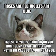 Roses are red...violets are blue. You belong in the zoo.  My attorney said not to feed the animals at the zoo.
