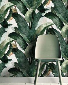 Botany wallpaper #wallpaper #chair #interior #interiors #interiordesign #design #architecture