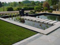 formal swimming pond