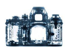 Bryan Whitney X Ray Camera