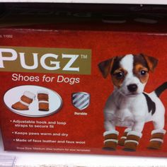 Definitely getting Pugz for our chiweenie, Elton for the Winter! Love it! Just thinking of Elton wearing them makes me laugh!