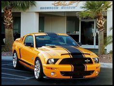 2008 Ford Shelby GT500 Super Snake Coupe for sale by Mecum Auction