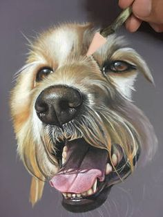 PanPastel , Pastel Pencils On Colourfix Smooth Paper. in Progress – Tiere Pastel Drawing, Pastel Art, Painting & Drawing, Crayons Pastel, Pastel Pencils, Animal Paintings, Animal Drawings, Art Drawings, Pastel Paintings