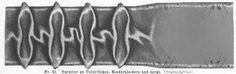 1871.  Der Bazar: illustrirte Damen-Zeitung.  Ribbon trim with vertical mouths.