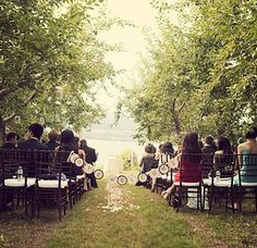 An apple orchard wedding. | 23 Unconventional But Awesome Wedding Ideas