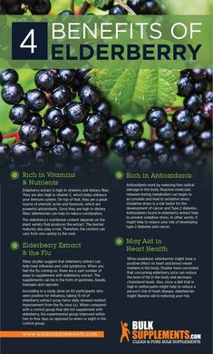 Elderberry: Benefits, Dosage & Side Effects - Natural Healthy Life Herbal Remedies, Health Remedies, Natural Remedies, Lemon Benefits, Coconut Health Benefits, Permaculture, Elderberry Benefits, Elderberry Recipes, Elderberry Plant