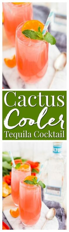 Cactus Cooler Tequila Cocktail is a blend of smooth artisan tequila with orange, tangerine, lime, and cranberry juice and triple sec! via @sugarandsoulco