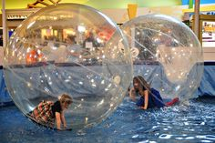 human hamster ball + water. YES.  How wrong is it that I want to try this....