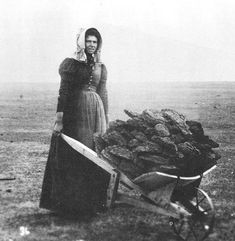 Pioneer woman collecting buffalo chips - used as fuel on the plains.
