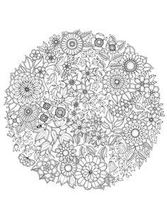 coloriage Une rosace de fleurs