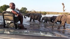 Here's why you should upgrade to a private safari vehicle the Kruger National Park. Kruger National Park, National Parks, Private Safari, Planning Your Day, Game Reserve, Stay The Night, Leopards, Real Friends, Continents