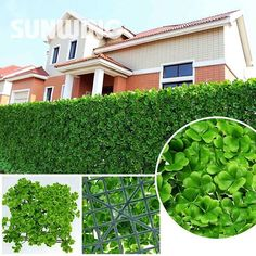 3 Sqm Artificial Grass Fence Plastic Plant Garden Fence Synthetic Buxus Boxwood Hedge Panels Uv Fresh Pe Garden Ornaments $306.58 - Https://Goo.Gl/Jcjfyq  Pro Fitting Hooks Village Real Direct Parts Development Company Engineering Assembly House Social Works Store  Type: Fencing, Trellis & Gates Frame Material: Plastic Feature: Easily Assembled,Eco-Friendly,Rot Proof,Waterproof Plastic Type: Pe Pressure Treated Wood Type: Nature Model Number: G0602A007 Frame Finishing: Pe Item Name…