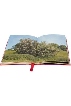 Assouline - Gucci: Blind For Love By Nick Waplington Hardcover Book - Red - one size