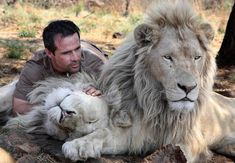 This men has the most amazing relationship with his lions