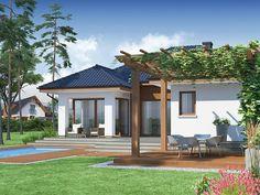 proiecte de case cu living mare 3 terasa