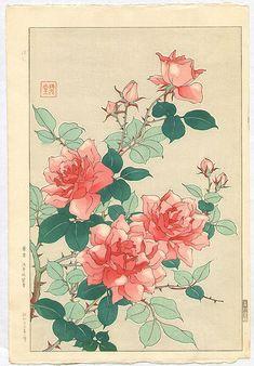 Roses, Shodo Kawarazaki