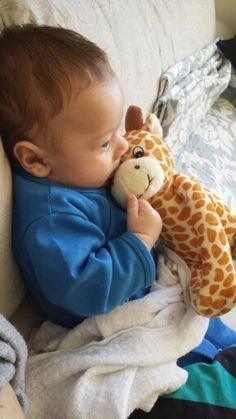 Bebe Girafa