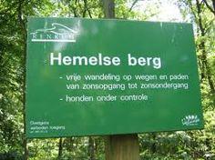 Wandelen op de Veluwe bij Oosterbeek