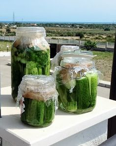 The Adventures of the Cooking Pilot: Hungarian Sun Pickles (Kovászos uborka) Hungarian Recipes, Hungarian Food, Hungarian Cuisine, Veggie Recipes, Cooking Recipes, Canning Pickles, European Cuisine, Homemade Pickles, Fermented Foods