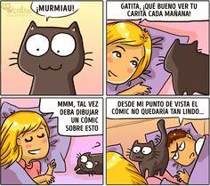 Cómic que muestran cómo cambia la vida cuando tienes un gato - Taringa!