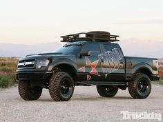 1207tr-06+online-lifted-truck-gallery+2010-ford-f-150-4x4