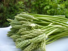 Asperges sauvages