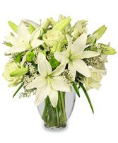 Grandparents Day Flowers from MCATEER FLORIST - your local Brooklyn, NY Florist & Flower Shop. Order flowers for Grandparents Day directly from MCATEER FLORIST - your local Brooklyn, NY florist and flower shop to save time and money.