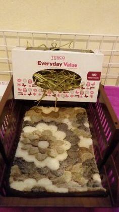 DIY hay holder for guinea pigs