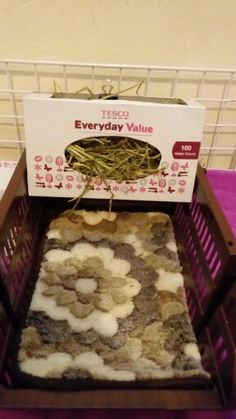 DIY hay holder for guinea pigs