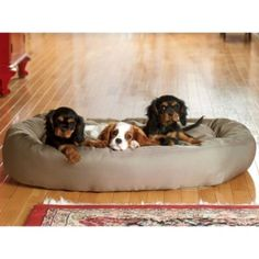 Brutus Tuff Comfy Cup Dog Bed