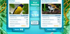 Jogo do tipo Supertrunfo Desafio das Aves, de Ciências