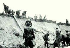 1953 - 2 en 3 februari De dam wordt met man en macht gedicht na de storm