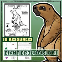 giant ground sloth 10 resources coloring pages reading activities