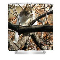 #Cat Hunting Bird #Shower #Curtain by Judi Saunders