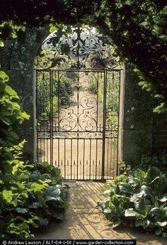 """A beautiful entrance to a secluded, hedge-surrounded garden. Like in """"The Secret Garden. Garden Entrance, Garden Doors, Garden Gates, Garden Art, Pool Gates, Fence Gate, Arbor Gate, Front Gates, Wrought Iron Gates"""