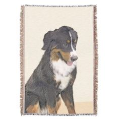 Bernese Mountain Dog Throw - drawing sketch design graphic draw personalize