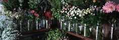 ex.│bouquet 季節の花束 - ex. flower shop & laboratory(イクス フラワーショップ アンド ラボラトリー)   キナリノモール