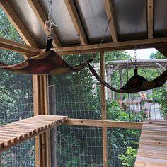 Outdoor Cat Hammock for Catios - Modern Design