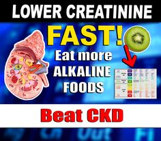 Your kidneys will definitely love this information! Creatinine Levels, Kidney Disease, Fitness, Food, Meal, Kidney Disease Diet, Essen, Hoods, Keep Fit