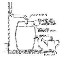 How to make a rain barrel (use to water plants/flower beds/garden