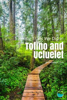 Doing some hiking in Tofino or Ucluelet? Check out which ones we did and save yourself the trouble of choosing the right ones. Moving To Canada, Canada Travel, Hiking Spots, Hiking Trails, Sunshine Coast, Rocky Mountains, Quebec, Victoria Vancouver Island, Toronto